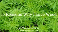 http://atcannabis.com/10-reasons-why-i-love-weed/