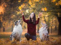 """Se psy podle Veroniky 🐾 na Instagrame: """"Podzim je vlastně moc fajn ❤️. Ačkoliv se stmívá dříve, je venku zima a bláto, existuje spousta aktivit, kterými se můžeme bavit s pejsky i…"""" When Your Best Friend, Best Friends, Life Is Precious, Pet Photographer, Strong Relationship, Photo Look, Best Memories, Animal Photography, Veronica"""