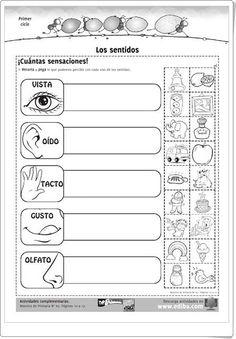"""""""Los sentidos"""" es una magnífica ficha de trabajo, de ediba.com, para contribuir en el aprendizaje sobre los sentidos en 1º y 2º niveles de Educación Primaria.:"""