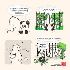 Wonder Panda – Panda and Polar Bear