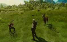 Deer hunting in The Witcher 3
