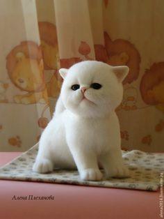Купить Ви-Ви - белый, котик, котенок, котенок игрушка, котенок из шерсти, киска, кошечка
