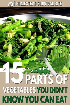 Most people throw out parts of vegetables that are not only good to eat but often have higher nutritional value than the other parts. Radish Greens, Turnip Greens, Survival Food, Homestead Survival, Emergency Preparedness, Survival Skills, Veggie Recipes, Healthy Recipes, Veggie Dishes