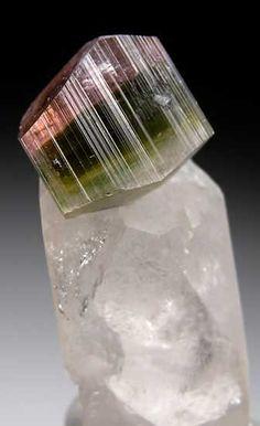 Tourmaline on Quartz from Stak Nala, Skardu Dist., Pakistan (Marin Mineral Company)