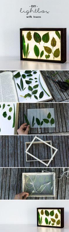 schereleimpapier: Auf meinem Blog zeige ich euch, wie ihr eine DIY Lightbox mit Blättern ganz einfach basteln könnt! | Do it yourself | selbstgemacht | Lichtbox | Geschenk | Deko | Geschenk | Garten | Floral | Pflanzen | plants | how to craft a lightbox with leaves