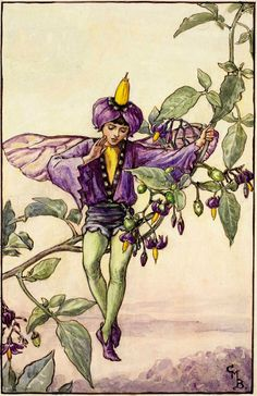 The Fairies of The Summer: The Nightshade Fairy