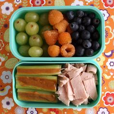 abento284--grapes, golden raspberries, blueberries, celery with peanut butter, turkey