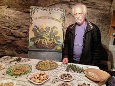 Presentazione del carciofo di Perinaldo, presidio Slow Food.