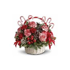 Candy Cane Carnation Christmas ($48) ❤ liked on Polyvore featuring home, home decor, holiday decorations, christmas, christmas flowers, filler, christmas holiday decor, flower stem, christmas holiday decorations and flower home decor