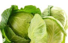 Verza: proprietà curative, diuretiche, nutritive e benefiche - La verza vanta proprietà curative, diuretiche, nutritive e benefiche eccellenti per la salute dell'organismo. Scopriamo quali.