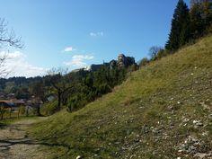 Le chateau de Joux ( à visiter toute l'année )