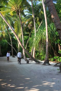 Maldives Resort Soneva Fushi