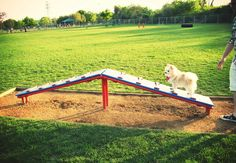 About dog playground on pinterest dog agility dog park and dog