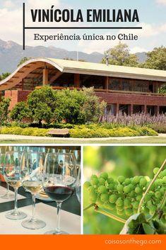 Vinícola Emiliana, passeio e degustação de vinhos orgânicos no Chile (perto de Santiago)