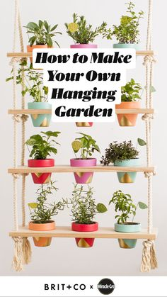 How to Make Your Own Hanging Garden Indoor Garden, Outdoor Gardens, Hanging Herb Gardens, Back Yard Gardens, Outdoor Potted Plants, Indoor Plant Decor, Best Indoor Hanging Plants, Diy Planters Outdoor, Patio Plants