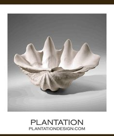 I'm sure Hobby Lobby, Michaels, or similar stores would have a realistically-priced knock-off of this bowl. Different-sized shell bowls on a shelf to store bobby pins, clips, etc.