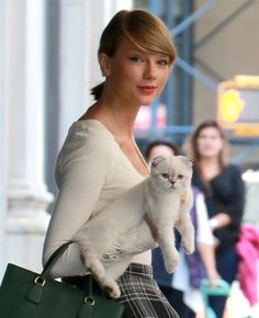 Fan of Ms Taylor Swift. She knows how to pick up a cat :) hope one day we can meet. Big Hugs ~ Bella the Scottish Fold