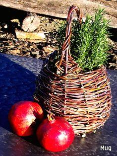 Rattan Basket - Hand weaved with love by Barbara Mugnai