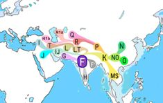 Haplogroup F (Y-DNA). Haplogroup F, also known as F-M89 and previously as Haplogroup FT is a very common Y-chromosome haplogroup. The clade and its subclades constitute over 90% of paternal lineages outside of Africa. The possible place of origin is South Asia.