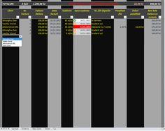 Situatii Incasari si Plati V.3 Microsoft, Bar Chart, Desktop Screenshot