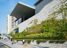 Exterior of Hyogo Prefectural Museum of Art (兵庫県立美術館) Hyogo, Art Museum, Exterior, Architecture, Building, Photography, House, Arquitetura, Photograph