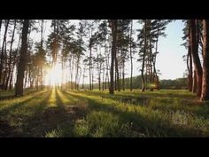 """Homeward Bound - Mormon Tabernacle Choir -  """"If you find it's me your missing, If you're hoping I'll return, to your thoughts I'll soon be listening..."""""""