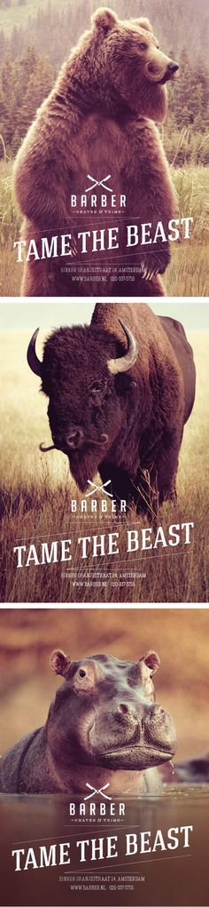 Moustached Animal Ads : Barber Shaves & Trims