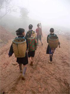 Hmong children, Sapa - Vietnam