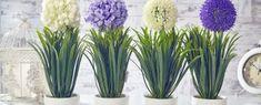 Új helyre költözöl? Így költöztesd a szobanövényeidet! Glass Vase, Anna, Plants, Home Decor, Decoration Home, Room Decor, Plant, Home Interior Design, Planets