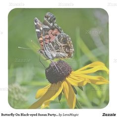Butterfly On Black-eyed Susan Party Coaster Square Paper Coaster