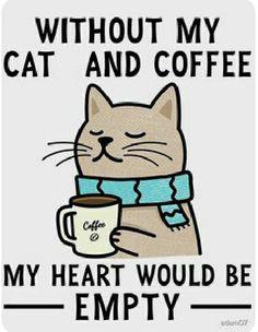 Crazy Cat Lady, Crazy Cats, Cute Cats, Funny Cats, Cat Quotes, Cat Drawing, Beautiful Cats, Cat Memes, Cat Art