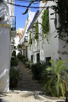 Marbella homes, Spain Spanish Style Homes, Spanish House, Marbella Spain, Marbella Malaga, Places To Travel, Places To See, Beautiful World, Beautiful Places, Courtyard Landscaping