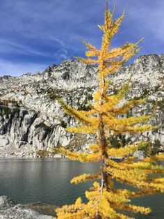 The Enchantments & Dragontail Peak -byQiangLuo