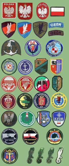 Polish military insignias from my collection Military Ranks, Military Units, Military Insignia, Military Gear, Military Personnel, Airborne Army, Uniform Insignia, Gear Art, My Collection
