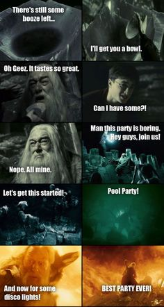 Dumbledore's party