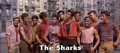 The Sharks from West Side Story (1961)