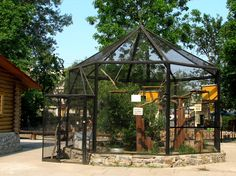 Pet Raccoon, Pet Fox, Diy Cat Enclosure, Zoo Architecture, Greenhouse Shed, Bird Aviary, Animal Room, Raccoons, Pheasant