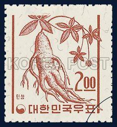 REGULAR STAMP, ginseng, Plants, Coral, 1963 05 20, 보통우표, 인삼, 1963년 5월 20일, 363, postage 우표