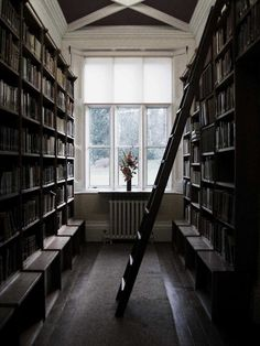 floor to ceiling bookshelves complete with ladder and  seating. I will have this.