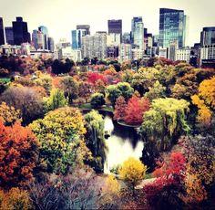 Boston in Autumn