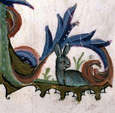 Marginal rabbit, Guido de Cauliaco, Chirurgia, Italy 14th century (Carpentras, BM, ms. 322, fol. 104v)