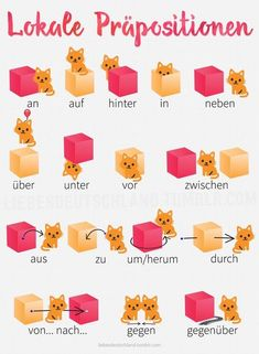 I got this nice pics from my tandem partner. She's kind of obsessed with her cats and she found some cute german resources to better understand locative prepositions. Study German, German English, Learn German, Learn French, German Grammar, German Words, German Language Learning, Language Study, Spanish Language