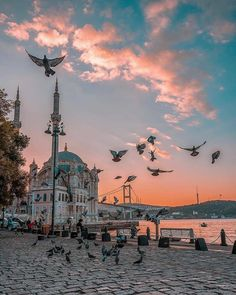 Ortakoy Mosque and the bridge gleaming under the last rays of sunlight. Beautiful Mosques, Beautiful Places, Best Photo Background, Watercolor Architecture, Istanbul Travel, Picsart Background, City Landscape, Turkey Travel, Hagia Sophia
