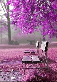 would any one like to sit with me?