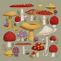 Mushroom Drawing, Mushroom Art, Aesthetic Drawing, Aesthetic Art, Pretty Art, Cute Art, Art Sketches, Art Drawings, Drawing Frames