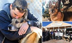 Dog whose owner willed him to be euthanized arrives at sanctuary