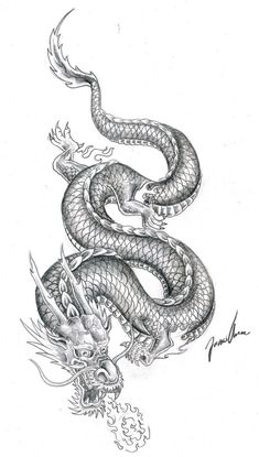 chinese dragon practice 2 by JonasOlsenWoodcraftYou can find Chinese dragon tattoos and more on our website.chinese dragon practice 2 by JonasOlsenWoodcraft Chinese Tattoo Designs, Dragon Tattoo Designs, Best Tattoo Designs, Chinese Design, Chinese Tattoos, Chinese Art, Bild Tattoos, Body Art Tattoos, Small Tattoos