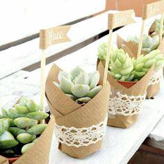 #HLo Tips: Otro buen recuerdo para dar a los invitados el día de la boda, son las plantas que entran en la categoría de obsequios duraderos. Pueden crecer y vivir muchos años, lo que puede simbolizar el matrimonio de los novios. Fotografía. @MiniPlantas-PlantasSouvenir