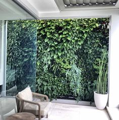 We stand by any team that's willing to get creative with their use of natural resources, particularly within modern landscape settings. 🌱 This feature wall by provides satisfying juxtaposition to a notably clean, white patio. Love your work! Small Courtyard Garden Ideas Australia, Small Courtyard Gardens, Small Courtyards, Small Gardens, Modern Courtyard, Courtyard House, Courtyard Ideas, Side Yard Landscaping, Modern Landscaping