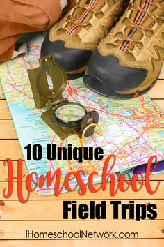 10 Unique Homeschool Field Trips For Multi-Age Children. Most families have multiple ages of children and want their kids to learn together. Homeschool Curriculum, Homeschooling Resources, School Fun, School Daze, Home Schooling, Kids Education, Teaching Kids, Teaching Tools, Just In Case
